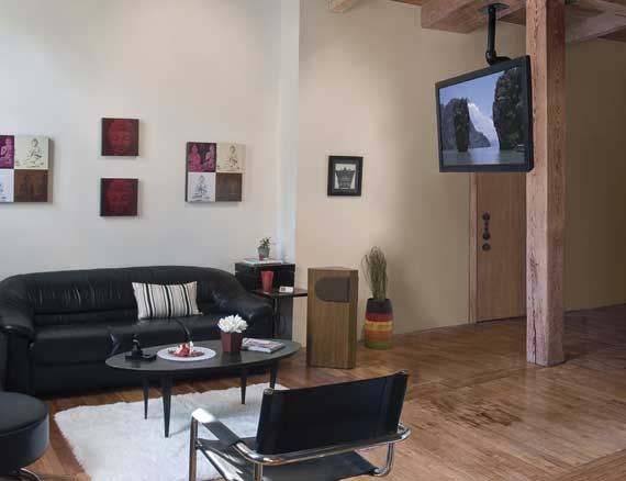 Sanus Visionmount Universal Tilt And Swivel Ceiling Mount